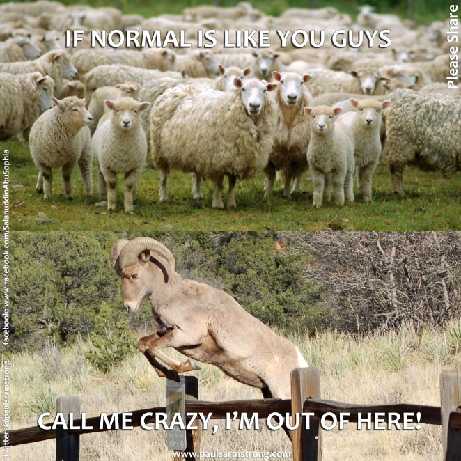 If normal is like you guys