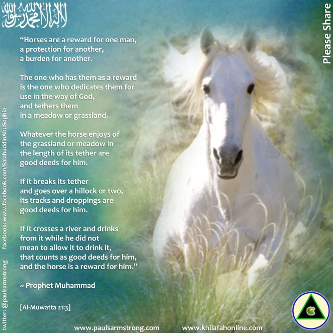 Prophet Muhammad - Horses are a reward