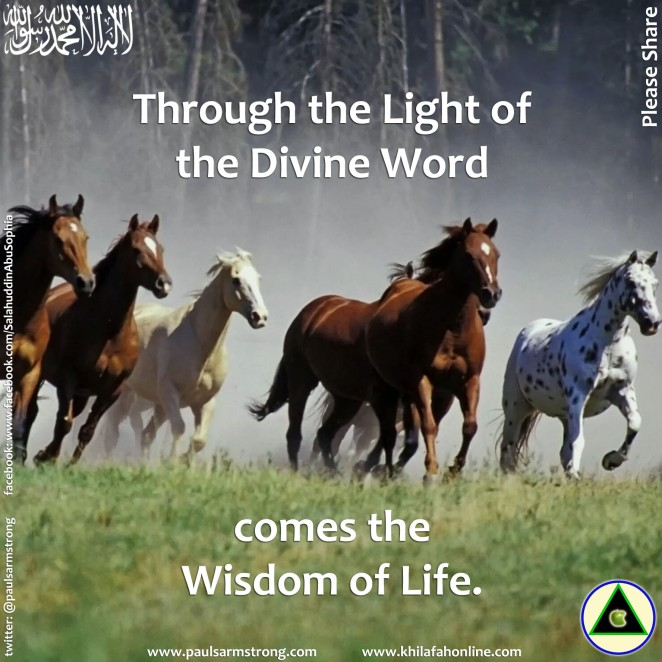 Through the Light of the Divine Word