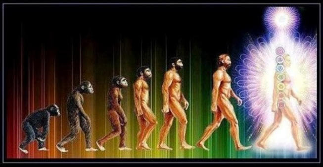 evolution-of-light-being700