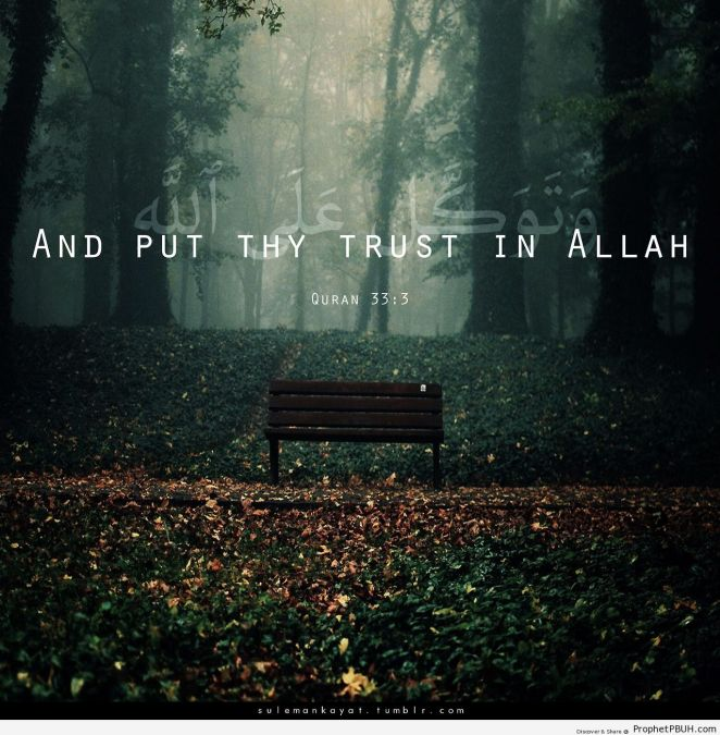 And-put-thy-trust-in-Allah-and...-Islamic-Quotes-Hadiths-Duas